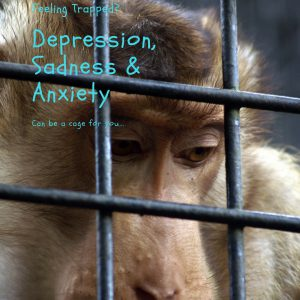 monkey, depression, anxiety, sadness